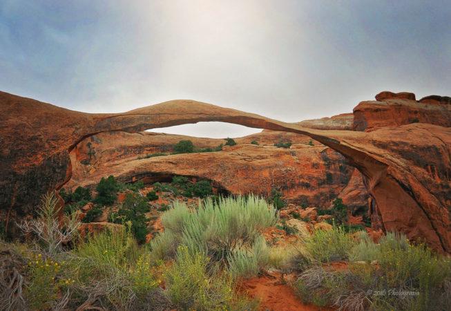 'Landscape Arch in Utah' by Photographer Debbi nelson. © Copyright 2016 Debbi Nelson dba Photograzia
