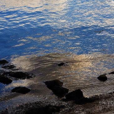'Beach' by Photographer Debbi Nelson. © Copyright 2016 Debbi Nelson dba Photograzia