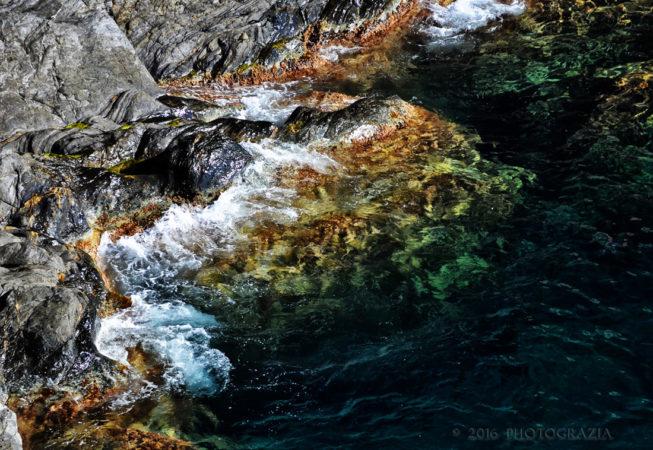 'Mediterranean' by Photographer Debbi Nelson. © Copyright 2016 Debbi Nelson dba Photograzia