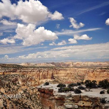'Roadside Utah' by Photographer Debbi Nelson. © Copyright 2016 Debbi Nelson dba Photograzia
