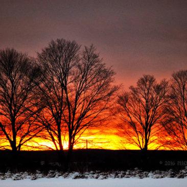 'Sunset' by Photographer Debbi Nelson. © Copyright 2016 Debbi Nelson dba Photograzia